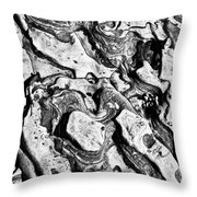 Stone Formation Point Lobos Throw Pillow