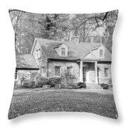 Stone House Throw Pillow