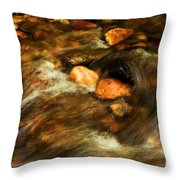 Stone Mountain River Rocks Throw Pillow