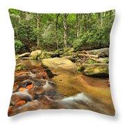 Stone Mountain Stream Throw Pillow