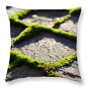 Stone Road With Green Moss Throw Pillow