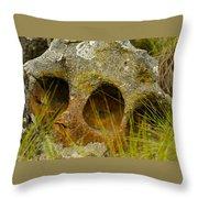 Stone Skull Throw Pillow