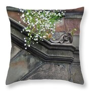 Stone Soil Throw Pillow