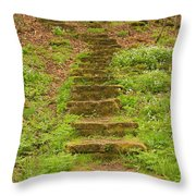 Stone Step Trail 1 Throw Pillow