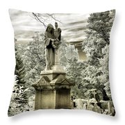 Stone Veil Throw Pillow