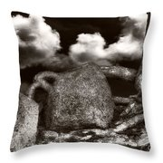 Stones And Roots Throw Pillow