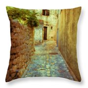 Stones And Walls Throw Pillow by Jasna Buncic