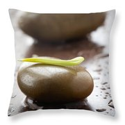 Stones With Water Drops Throw Pillow