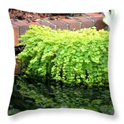 Stoneside Reflections Throw Pillow