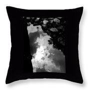 Stoney Reflections Throw Pillow