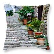 Stoney Stairs Throw Pillow