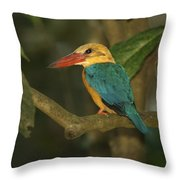 Stork-billed Kingfisher Perched Throw Pillow