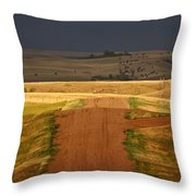 Storm Clouds In Saskatchewan Throw Pillow by Mark Duffy
