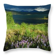 Storm In Dillon Throw Pillow