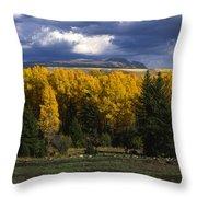 Storm Over Sleeping Indian-grand Tetons Throw Pillow