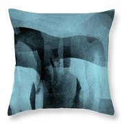 Storm Shadows Throw Pillow