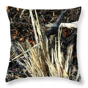 Storm Splinters Throw Pillow