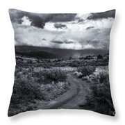 Storm Track Throw Pillow