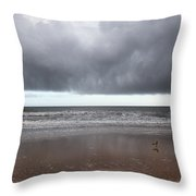 Storm Watch Throw Pillow