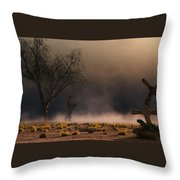 Stormwalk Throw Pillow