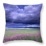 Stormy Clouds Approaching Field Of Throw Pillow