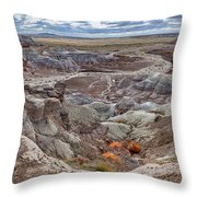 Stormy Morning At Petrified Forest  Throw Pillow