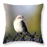 Straddling The Fence Throw Pillow
