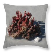 Stranded Coral Throw Pillow