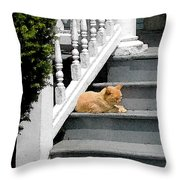 Stratford Cat Nap Throw Pillow