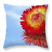 Strawflower Reflection Throw Pillow