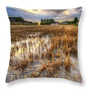 Straws And Sunset Throw Pillow