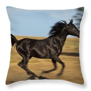 Streakin' Throw Pillow