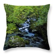 Stream Flowing Through A Forest Throw Pillow