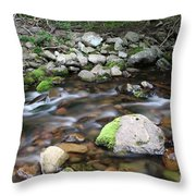Stream In Nova Scotia Throw Pillow