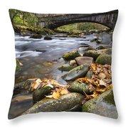 Stream In The Great Smokie Mountain National Park Throw Pillow