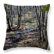 Stream In The Woods Throw Pillow