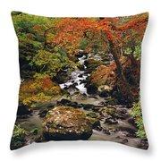 Stream Near Glengariff, Co Cork, Ireland Throw Pillow