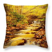 Streams Of Gold Throw Pillow