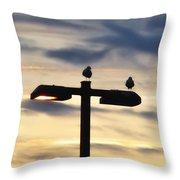 Street  Light Perch Throw Pillow