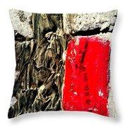 Streets Of Coronado Island 32 Throw Pillow