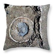 Streets Of Coronado Island 40 Throw Pillow