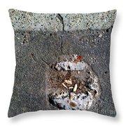 Streets Of Coronado Island  7 Throw Pillow
