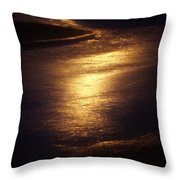 Gold Water On The Street Throw Pillow