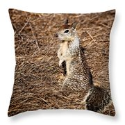 Strike A Squirrelly Pose Throw Pillow