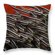 Striped Catfish Throw Pillow