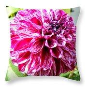 Striped Dahlia Throw Pillow