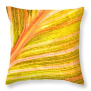 Striped Leaf Throw Pillow by Bonnie Bruno
