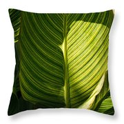 Striped Leaf Pattern  Throw Pillow