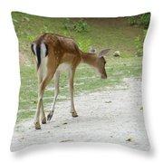 Strolling Through The Park Throw Pillow