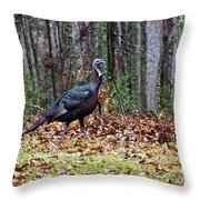Strutting Turkey Throw Pillow